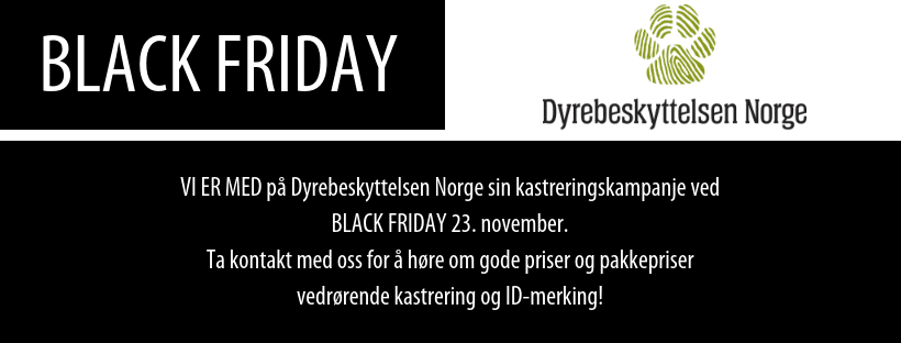 Black Friday-Kastreringskampanje
